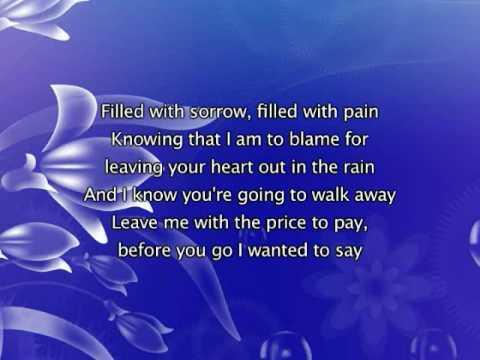 Jonas Brothers - Sorry [with lyrics]