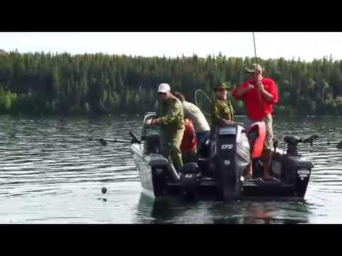 Lake Trout of Cold Lake