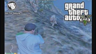 Grand theft Auto V Chop VS Mountain Lion
