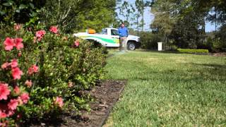Spring Lawn Fertilization And Tips