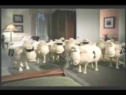 Serta Rapping Sheep Youtube
