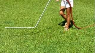 How Fertilize Lawn Liquid Organic Fertilizer