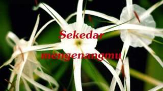Hijau Daun - Jatuh (with lyrics)