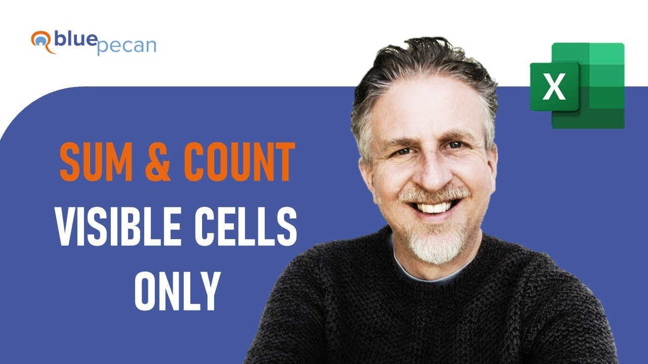 SUM and COUNT Visible Cells Only | Exclude Hidden Cells