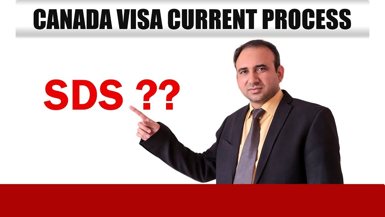 canada visa process If you have plans to move to canada through family or spousal sponsored visa in canada, you may get in touch with visa avenue immigration.