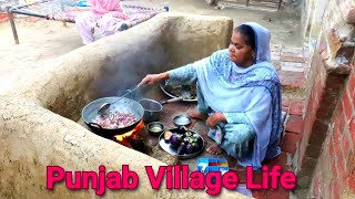 Punjabi Village woman Cooking Food On WoodFire❤️ Village Life of Punjab/India♥️ Rural life of Punjab