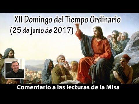 XII Domingo del Tiempo Ordinario Ciclo A (25 de junio de 2017)