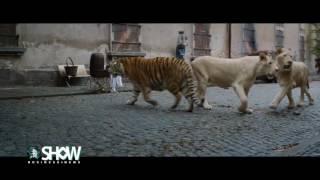 Трейлер фільму «Дружина доглядача зоопарку»