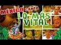 LibroDeLaSelva: Lo Más Vital (Tributo elenco, fans y Youtubers)