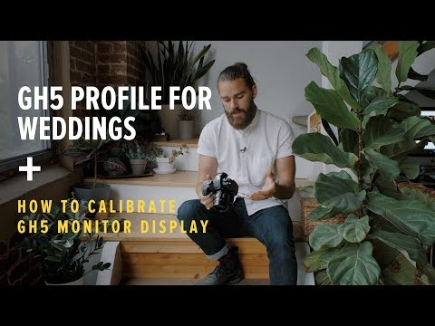 How to Calibrate the GH5 Monitor and our Favorite Profile for Weddings