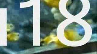 eNVy u18s Warm Up Video