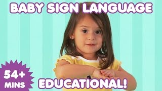 Baby Sign Language | Baby Sign Language Basics | Sign Language for Babies