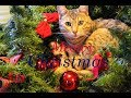 CATS and Christmas Tree   Funny and Fail compilation   Cats and Kitten Playing