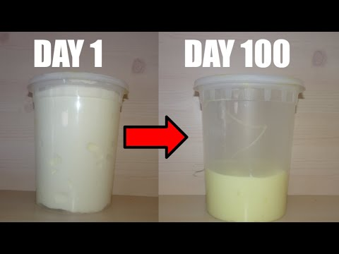 100 DAYS OF FLUFFY SLIME CHALLENGE! WHAT ACTUALLY HAPPENS TO FLUFFY SLIME IN 100 DAYS?! + GA WINNERS