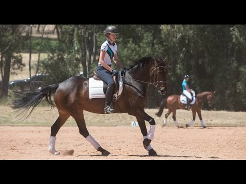 Eventing Young Rider Scholarship Weekend South Australia | Vlog