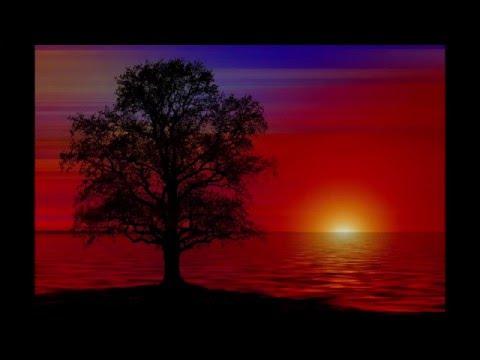 4 Hour 4Hz Theta-Wave Binaural Beat | Deep Meditation and Sleep Tool