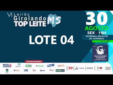 LOTE 04 - ANITA SUPERSIRE DLS PANTANAL