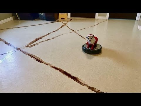pets-and-babies-riding-roomba-[epic-laugh]