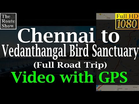 Chennai to Vedanthangal Bird Sanctuary, Tamilnadu full road trip