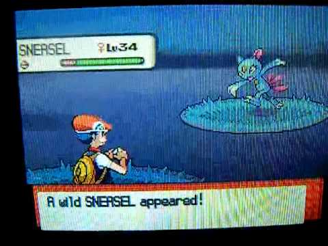 How Evolve A Sneasel