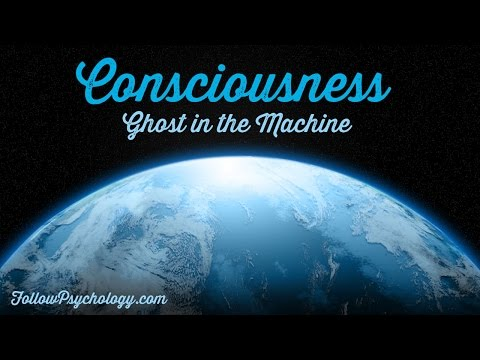 The Ghost in the Machine - Why we Evolved Consciousness