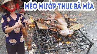 Bác Chung làm con mèo mướp thui bã mía NTN để làm món mèo xào lăn ngon nhất bàTân Vlog phải ghen tị