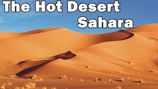 The Hot Desert Sahara || Sahara Desert (Geography, Climate, Wildlife)