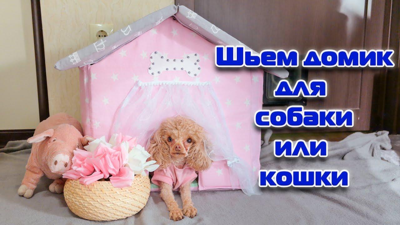 Что сшить для маленькой собачки фото 793