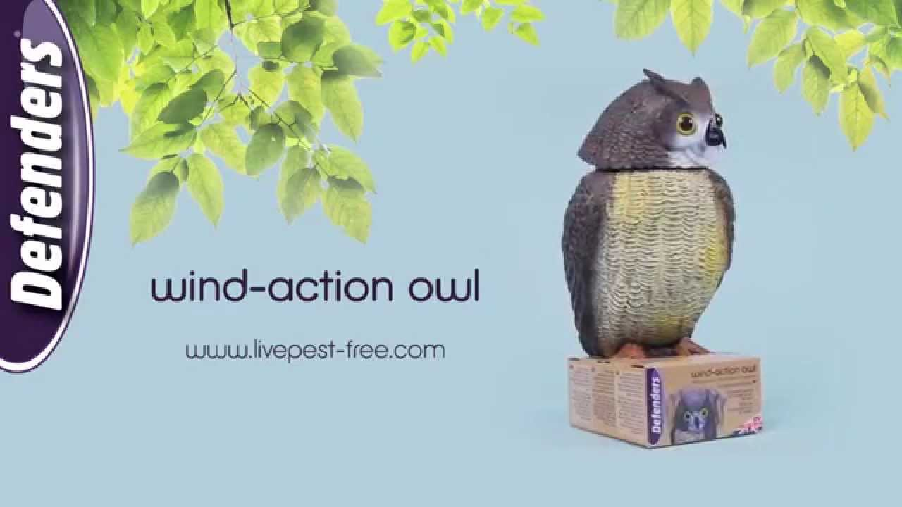 Merveilleux Deter Birds From Garden Areas With Wind Action Owl (STV965) From Defenders
