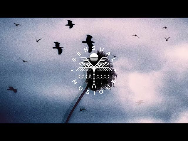 Dallerium x JRVO - Show Me The Way (Lyrics)