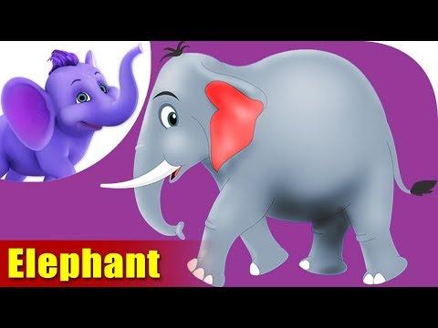 Elephant Rhymes, Elephant Animal Rhymes Videos for children