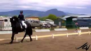 """Dressage """"the Highest Expression Of Horse Training"""" -  Kelowna Riding Club 2014   Youtube"""