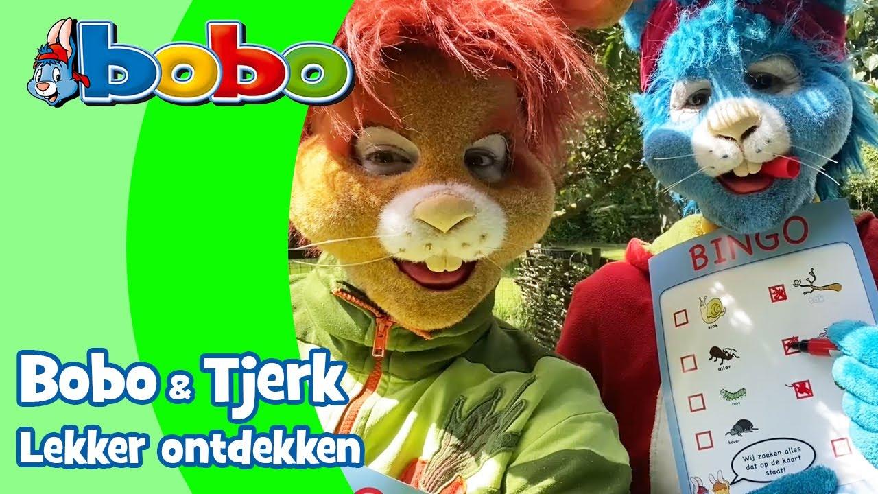 Bobo en Tjerk ontdekken #9 • Bingo
