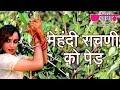 Download Mehandi Rachni Ko MP3 song and Music Video