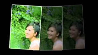 Chiếc lá vô tình (Bảo Chấn) - Hồng Nhung (1998)
