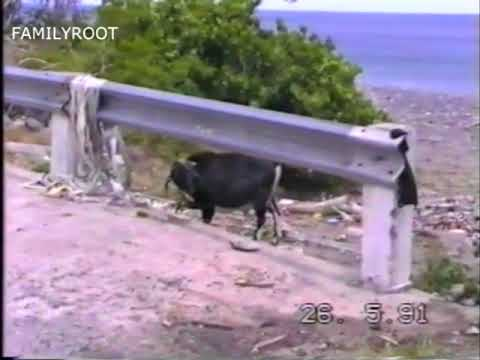 Montserrat W I   1991