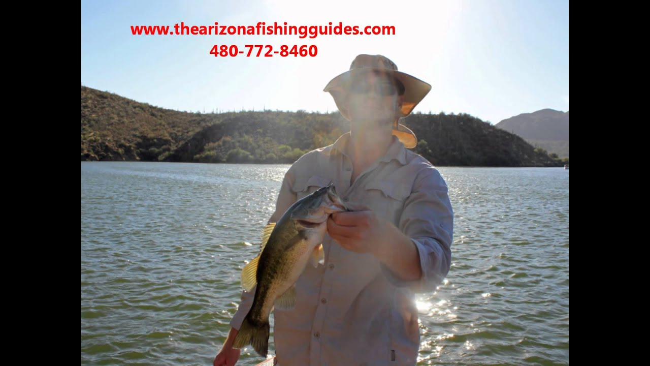 Fishing with josh bertrand at saguaro lake www for Saguaro lake fishing report
