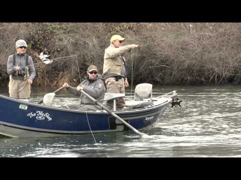 Trinity River Fly Fishing For Steelhead