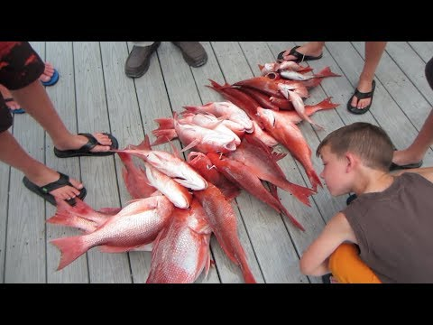 Destin Florida Fishing Trip On The Destin Princess