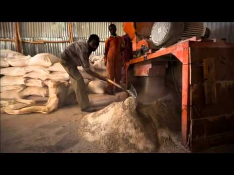 USAID Women's Land Rights: A Ripple Effect