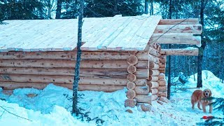 How to Build an Off Grid Log Cabin | Purlins and Roof| Lake Trout Stew | Cast Iron Cooking