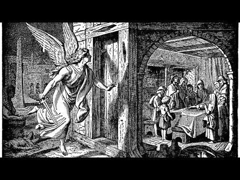 el-angel-de-la-muerte-/-the-angel-of-death
