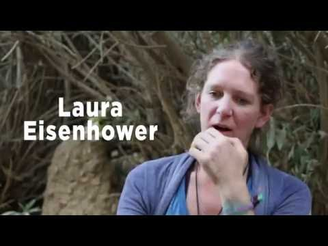 Laura Eisenhower Ascension Window, Stellar Activation Period, Mars Mission & Global Alchemy 1 of 8