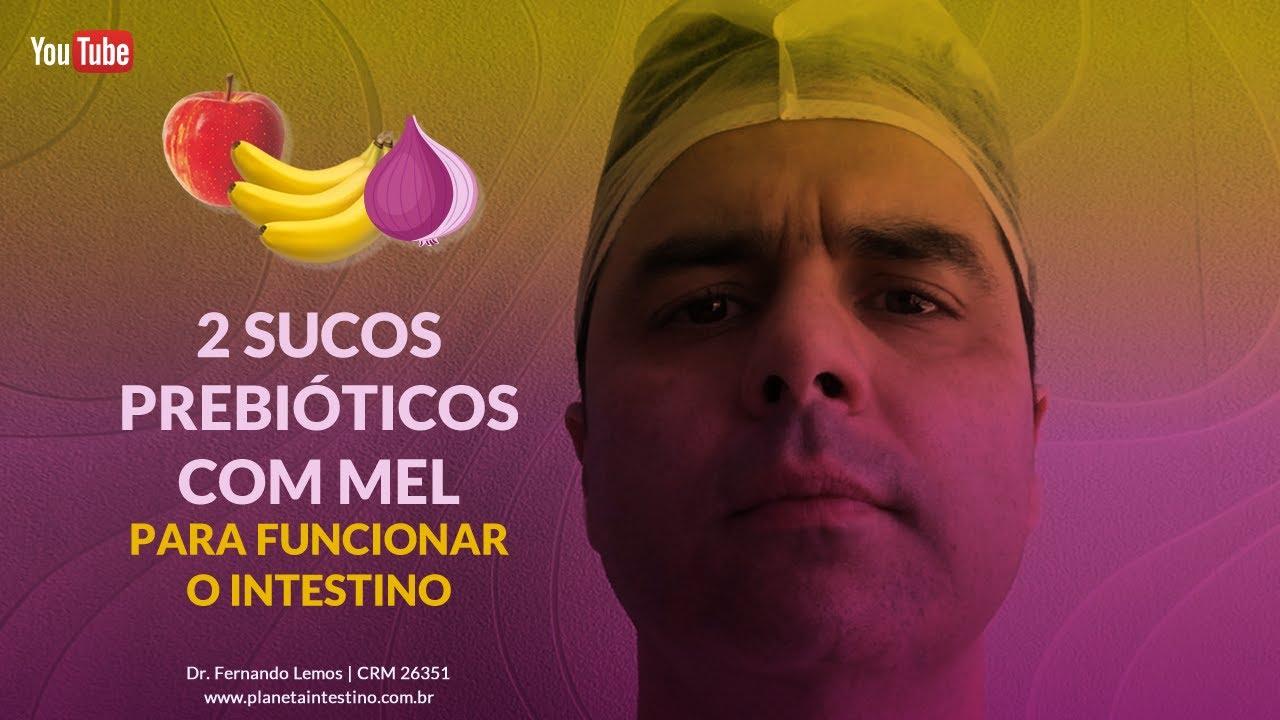 Download 02 Sucos Prebióticos com Mel  para funcionar o Intestino!