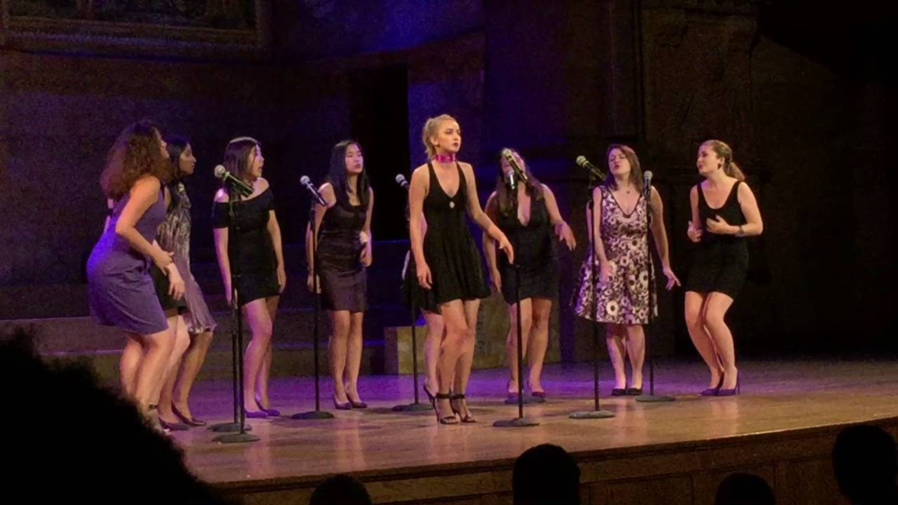Back to Black / Why Don't You Love Me - Princeton Acapella Tiger's Roar 2016