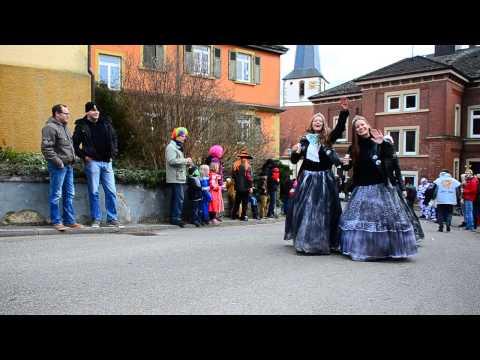 Faschingsumzug Hardthausen-Gochsen 2014