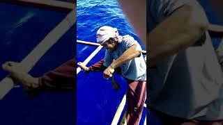 HANDLINE TUNA FISHING in Eastern Samar