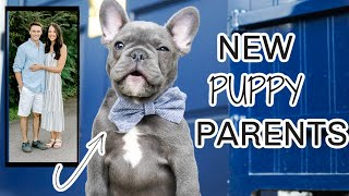 PICKING UP OUR FIRST FRENCH BULLDOG PUPPY!