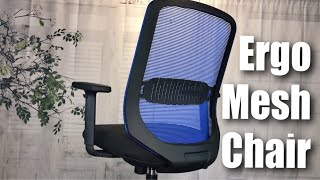 Comfortable Ergonomic Midback Mesh Office Chair with Lumbar Support by IntimaTe WM Heart review