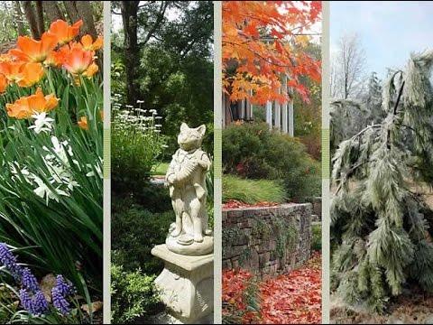 Four-Season Gardening Ideas